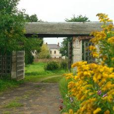 Вид на церковные ворота и флигель.