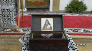 рака с мозами прп.Федора Санаксарского